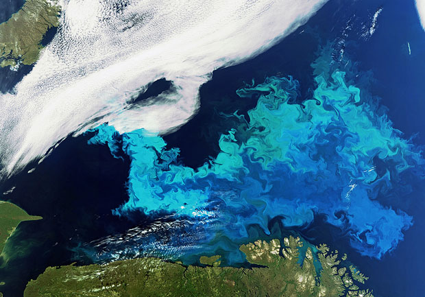 Mediciones Oceanicas De Referencia Para Sentinel 3 Latam Satelital
